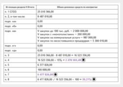отчет по закупкам у СМП