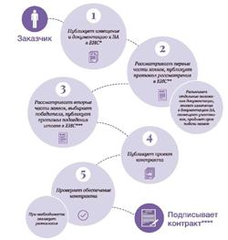 Как провести электронный аукцион: инфографика