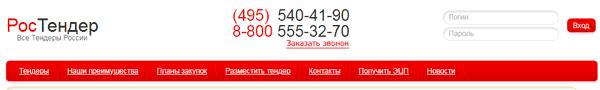 Как пользоваться сервисом Ростендер - Все тендеры России